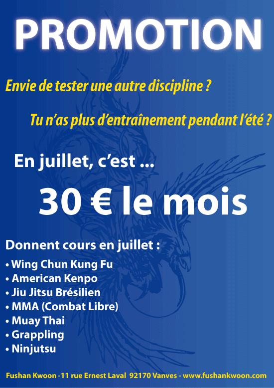 Cours d'arts martiaux : promotion juillet