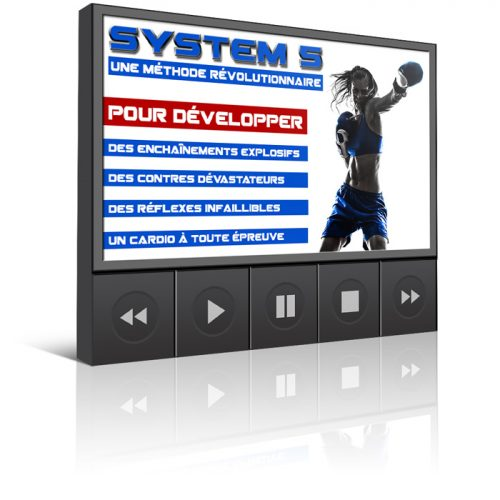 Kick-Ass-Boxing-System-5-3D