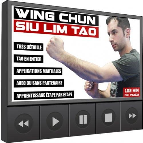 Cover-Wing-Chun-Siu-Lim-Tao