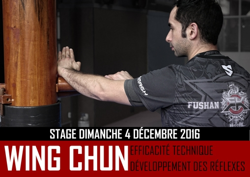 Stage Wing Chun Décembre 2016
